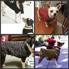 #Dog #Sweater to #Knit or #Crochet Roundup Part 2