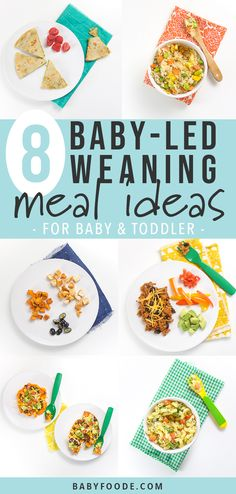 These 8 Baby-Led Weaning Meal Ideas for Baby + Toddler are going to be a big hit in your house! These meals are perfect for baby-led weaning, finger f Baby Led Weaning Lunch Ideas, Baby Led Weaning Breakfast, Baby Led Weaning First Foods, Weaning Foods, Baby First Foods, Baby Weaning, Baby Finger Foods, Weaning Toddler, Baby Muffins