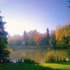 "Newton Park ""Good vibes and positivity on this Halloween afternoon <3  #bathspa #bathspauniversity #bathspauni #beauty #nature #lake #trees #bluesky #sun #autumn…"""