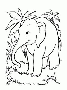 2o Awesome Jungle Coloring Pages http://procoloring.com/awesome-jungle-coloring-pages/