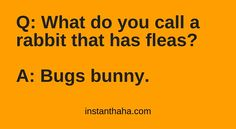 Rabbit has fleas http://instanthaha.com/joke/29