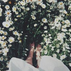 Weheartit | Tumblr |  #flowers #nature #indie #filter #vintage #boho
