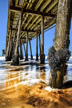 Imperial Beach, Portwood Pier, San Diego, California  I used to live there years ago!! This was our pier at the end of our street