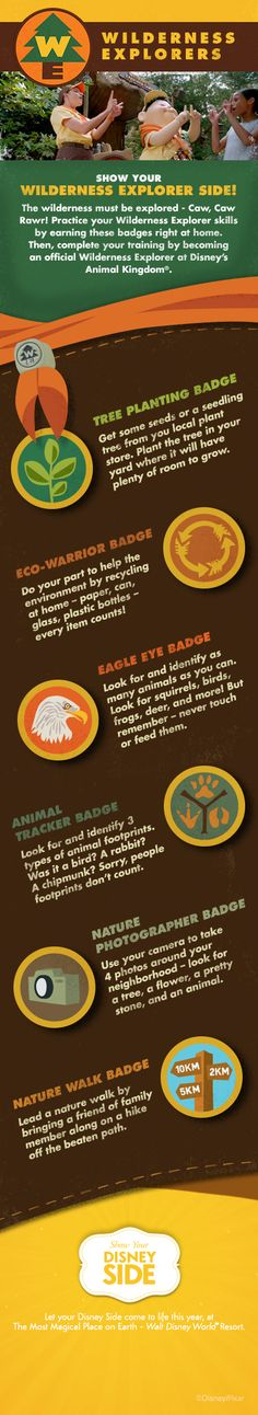 """The wilderness must be explored! Based on the Disney/Pixar film """"UP"""", become a Wilderness Explorer by earning these badges at home! Then visit Disney's Animal Kingdom to pick up the official Wilderness Explorers handbook! #DIY #nature #DisneySide"""