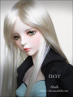 Ball-joint doll - Ball Joint Dolls Photo (21362252) - Fanpop fanclubs