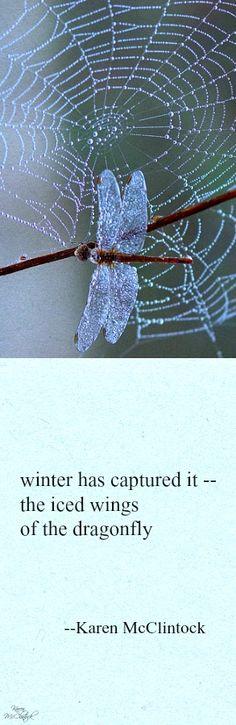 Haiku poem: winter has captured it -- by Karen McClintock.