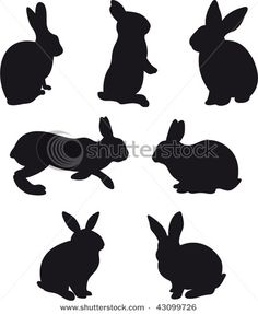 Fantastic rabbits in vector format