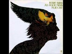 Rare Bird - Flight
