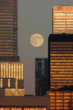 Moonrise and sunset in the financial district, Toronto