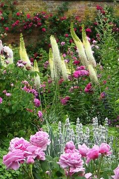 Must have: foxtail lilies and peony bush | cottage garden