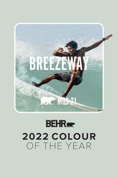Introducing Breezeway: a colour once untapped, now captured for your home. Behr Paint Colors, Wall Colors, House Colors, January Colors, Tan Paint, Green Colour Palette, Colour Palettes, Blue Words, Purple Walls
