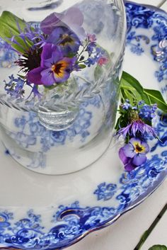 Pretty blues and violets (violas, actually) - Modern