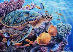 Sea Turtle Painting - Stories I Tell by Lachri Sea Turtle Painting, Sea Turtle Art, Turtle Love, Sea Animals Drawings, Sea Turtle Pictures, Cute Turtles, Sea Turtles, Underwater Art, Polychromos