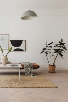 The rubber leaf plant is officially the new cool plant in modern design & it's easy to see why. Check out this post to learn how to properly take care of a rubber leaf plant of your own.