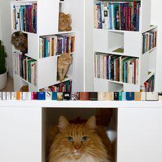 Muebles creativos  http://www.ucal.edu.pe/carreras/arquitectura-de-interiores/