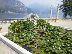 Giardini di Villa Melzi, Bellagio. #lakecomo #bellagio #como #villas #italian