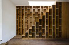 Entrance room with bookcase-staircase to the rooftop
