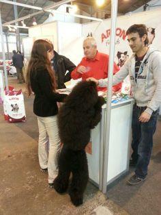 @Arion_ES #Exposición #Internacional #Canina #Martorell.Belcha no quiere ser menos y por eso también visita nuestro stand.