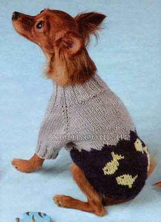 Одежда для кошек и собак своими руками Вязание спицами одежды для