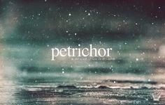 De geur na regenbui heeft een naam: petrichor
