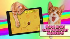 Just when you thought humans were the only ones who could use an iPad. Game for Cats is a free app you can download to have your cats entertained for hours. Just the way you can't stop playing Candy Crush, they won't be able to stop playing this