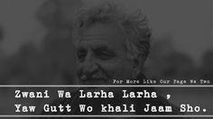 #αвí Pashto Shayari, Einstein, Poetry, Ali, Quotes, Quotations, Ant, Poetry Books, Quote