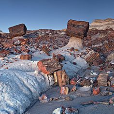 jasper logs supported by stone pedestals - Jasper Forest Hike - Petrified Forest, AZ - MUST GO!!!