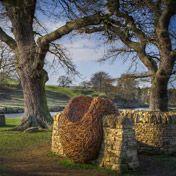 http://www.lauraellenbacon.com/work/landscape_cityscape_pieces/the_swarm_chatsworth.asp