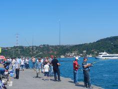 Isztambul haladó turistáknak! Istanbul, Dolores Park, People, Blog, Travel, Viajes, Blogging, Destinations, Traveling