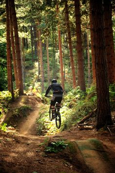 Hopping through the forest - Chicksands Bike Park
