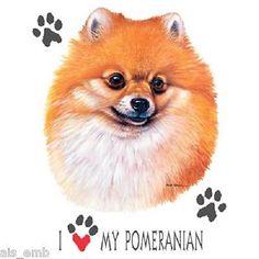 I Love My Pomeranian Dog T SHIRT Item no. 839b by AlwaysInStitchesCo on Etsy https://www.etsy.com/listing/252085010/i-love-my-pomeranian-dog-t-shirt-item-no