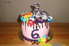 dětský dort s kočičkami