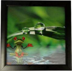 HD 3D Iconic Print - Spa Frog