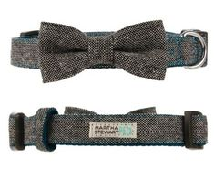 Homemade bow ties and Customized Pet Tag