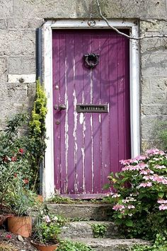 Love the plum door