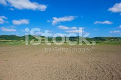 #Agricultural #Field In #Burgenland #Close To #Lake #Neusiedl @iStock #iStock @burgenlandinfo @neusiedlersea #summer #season #spring #biking #landscape #nature #outdoor #view #beautiful #bluesky #travel #sightseeing #holidays #vacation #leisure #austria #stock #photo #portfolio #download #hires #royaltyfree