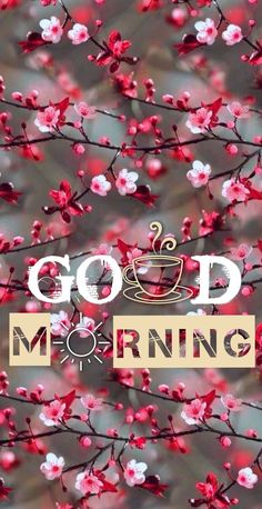 good morning wishes – good morning quotes ` good morning ` good morning quotes for him ` good morning quotes inspirational ` good morning wishes ` good morning beautiful ` good morning greetings ` good morning quotes funny Good Morning Beautiful Pictures, Good Morning Images Flowers, Good Morning Images Hd, Good Morning Picture, Morning Pictures, Good Morning Wishes Friends, Good Morning Quotes For Him, Good Morning Cards, Morning Morning