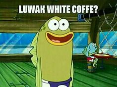Memes spongebob tapi boong ideas for 2019 All Meme, New Memes, Random Meme, Cartoon Jokes, Spongebob Memes, Spongebob Squarepants, Cartoon Art, Reaction Pictures, Funny Pictures