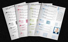 Infographic CV ontwerp 1