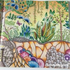 Part of double page from Johanna Basford Enchanted Forest  #mariannespencil…