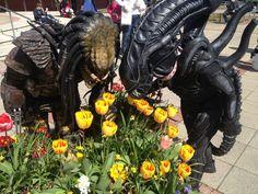 #alien , #predator , #flowers , #peace