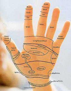 Hand reflexology chart: Dominic Blackmore (2)
