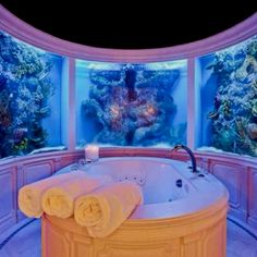 Bath tub surrounded by aquariums!
