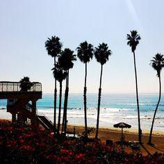 Our Beloved t Street Beach. #sanclemente #palm #surf