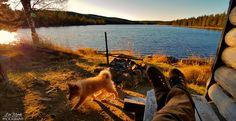 Fishing lake Sweden #fiske uk #vindskydd #grill #lapphund #fiske #naturegram #nature #lanscape #outdoorliving #övernattingsstugor #stugor #fisketjern #Myckelgensjö #Örnsköldsvik #Ångermanland #visitsweden  #friluftsliv #vildmark #forest  #scandinavia #natureza