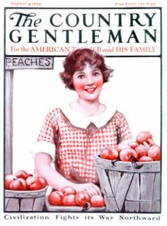 Country Gentleman - 1923-08-04: Baskets of Peaches (K.R. Wireman)