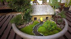 Un jardín de hadas