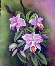 Watercolor Pencil Art, Abstract Watercolor, Watercolor Flowers, Orchids Painting, Fabric Painting, Orchid Drawing, Colored Pencil Artwork, Silk Art, Magnolia Flower