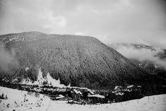 Snow Forest Photography in Black & White from de Val d'Aran - Spain - Miguel Sanchez - Professional Camera, Professional Photographer, Snow Forest, Forest Photography, Software, Spain, Etsy, Black And White, Travel