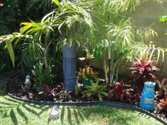 Tropical landscaping with palm trees, bromiliads and orchids.  Lakewood, CA